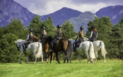 Tips til den gode ferie på hesteryg