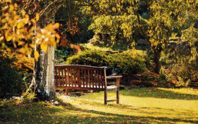 Skab hyggelige hvilepladser i haven